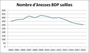 saillies BDP 2016 b